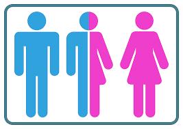 Gender-Hinweis
